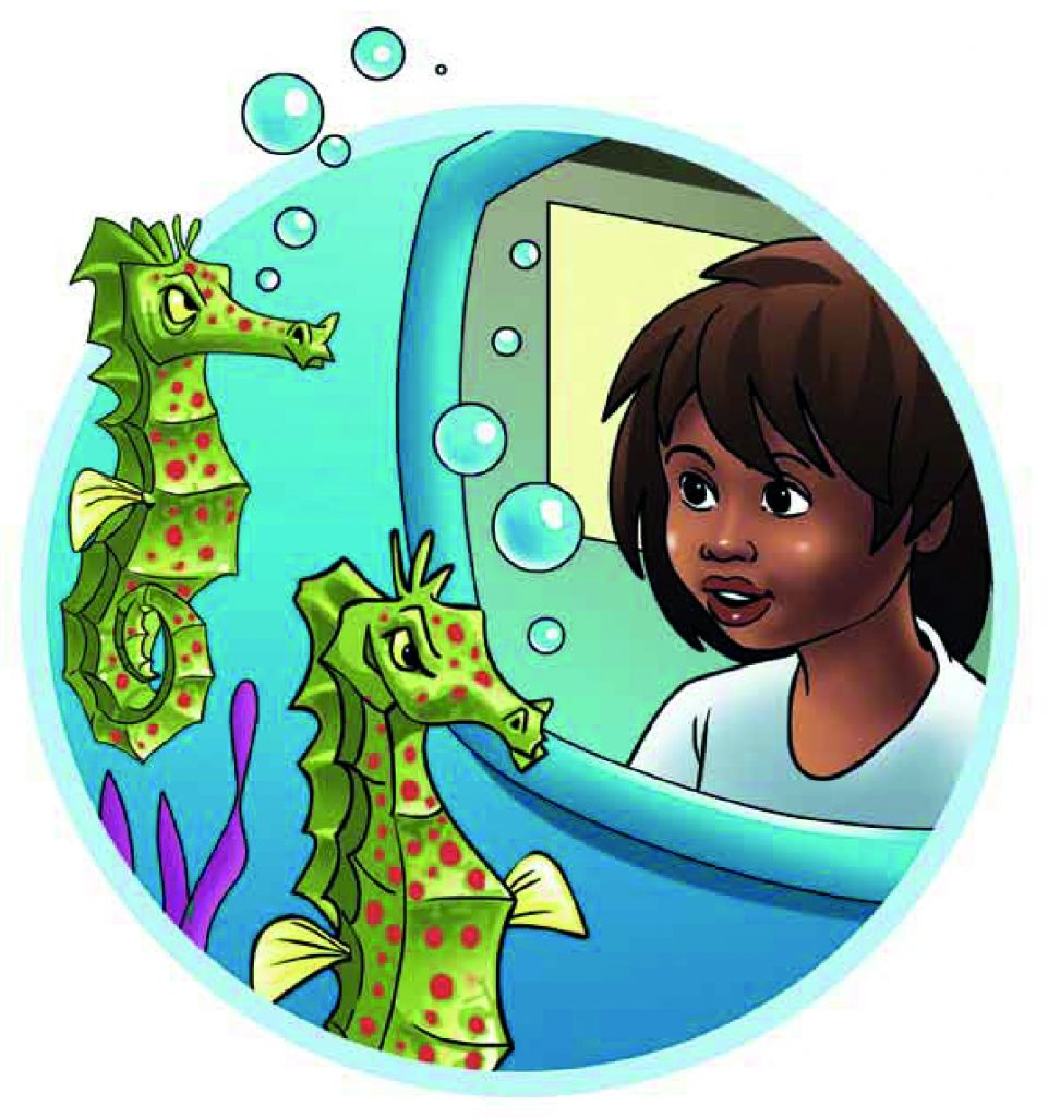 Sibo and the seahorses